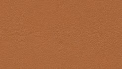 Leather Thema 5184