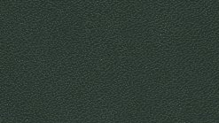 Leather Thema col. 6128